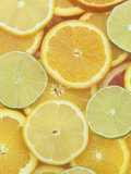 Citrus Slices Lemon  Lime  Orange  Grapefruit and Tangerine