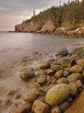 Dawn at Otter Cliffs  Acadia National Park  Maine