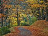Walking Trail around Bass Lake in the Autumn  Blowing Rock  North Carolina  USA