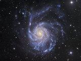 M101 Spiral Galaxy in Ursa Major