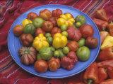 Variation in Tomatoes  Mixture of Rainbow Heirloom Varieties