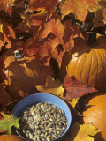 Pumpkins and Pumpkin Seeds  with Fall Leaves