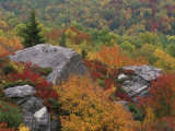 Rocky Outcrop and Autumn Colors  Blue Ridge Parkway  North Carolina  USA