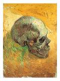 Skull in Profile  1887