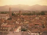 Lucca  Tuscany  Italy  Europe