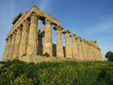 Temple of Hera  Dating from the 5th Century BC  Selinunte  Sicily  Italy  Europe