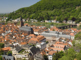 View from the Castle of the Old City  and the River Neckar  Heidelberg  Baden-Wurttemberg  Germany