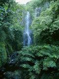 One Hundred Foot Wailua Falls Near Oheo  Hana Coast  Maui  Hawaii  USA