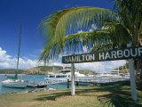 Hamilton Harbour on Hamilton Island  Great Barrier Reef  Queensland  Australia