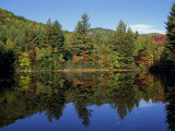 Fall Foliage Reflected in a Lake  Near Jackson  New Hampshire  New England  USA