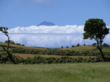 Pico Projects Above Clouds  Sao Jorge  Azores  Portugal  Europe