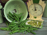 Fresh Garden Peas in an Old Colander with Old Salter Scales and Seed Packet