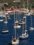 Moored Sailing Boats in Gustavia Harbour  St Barthelemy  Leeward Islands  West Indies