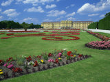 Formal Gardens with Flower Beds in Front of the Schonbrunn Palace  Vienna  Austria