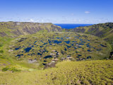 Crater of Ranu Kau  Rapa Nui  Chile  South America