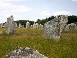 Megalithic Stones Alignments De Kremario  Carnac  Morbihan  Brittany  France  Europe