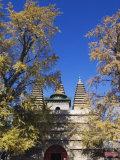 Zhen Jue Temple  Beijing  China