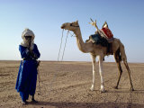 Tuareg Tribesman and Camel  Niger  Africa
