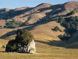 Coastal Hills of Marin County at Dusk  California  United States of America  North America