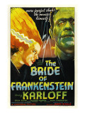 The Bride of Frankenstein  Elsa Lanchester  Boris Karloff  1935
