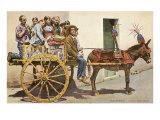 Sicilian Cart and Donkey  Palermo  Italy