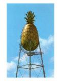 Pineapple Water Tower  Hawaii