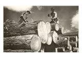 Lumber is King  North Idaho