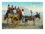 Sicilian Cart with Donkey  Italy