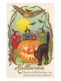 Witches  Bats Owl  Cat  Jack O'Lantern