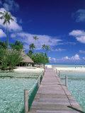 Walkway  Tahiti  French Polynesia  Oceania