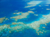 Aerial View of Moore Reef  The Great Barrier Reef  Cairns Area  North Coast  Queensland