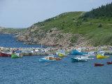 White Point along Aspy Bay  Cabot Trail  Cape Breton Island  Nova Scotia  Canada