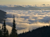 Cowlitz River Valley  Tatoosh Wilderness  Washington Cascades  USA