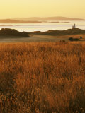Cattle Point Lighthouse  San Juan Island National Historical Park  Washington  USA
