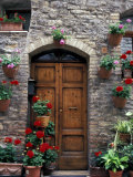 Flower Pots on Door  Assisi  Umbria  Italy