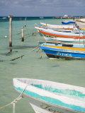 Fishing Boats Tied Up  Isla Mujeres  Quintana Roo  Mexico