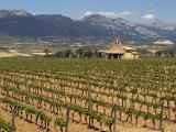 Small church next to the Wine Culture Museum  Briones village  La Rioja  Spain