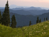 View of Washington Cascade Mountain Ranges  Washington State  USA