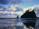 Sunrise on coast  Olympic National Park  Washington  USA
