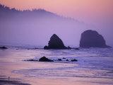 Runner on The Beach  Cannon Beach  Oregon  USA