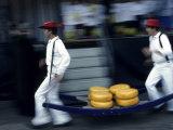 Cheese Carriers in Alkmaar  Holland