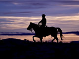 Cowboy on Horses on Hideout Ranch  Shell  Wyoming  USA