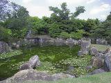 Japanese Garden of Nijo Castle  Kyoto  Japan