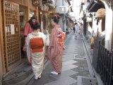 Maiko Street  Kyoto  Japan