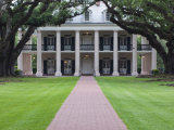 Oak Alley Plantation  Vacherie  St James Parish  Louisiana  USA