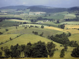 Fields of Ripening Crops Cover Maryland's Rolling Hills