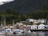 Houses Line Ketchikan Harbor and Fishing Boats in Marina