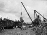 Cranes Load Large Bundles of Sugar Cane for Transportation to Markets