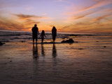 Rear View of a Family with One Child Walking on a Beach at Sunset