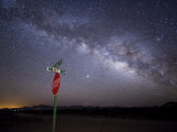 Milky Way Is Undimmed by Outdoor Lights